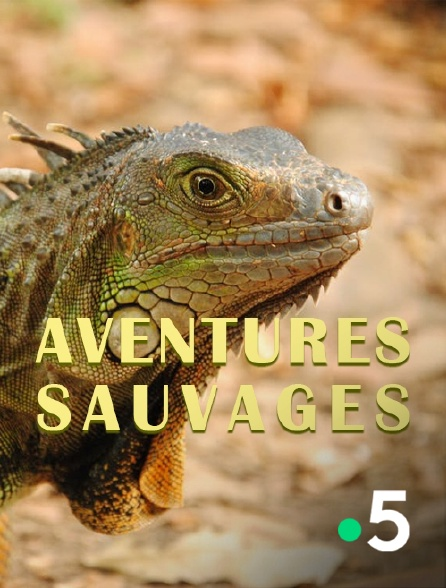 France 5 - Aventures sauvages
