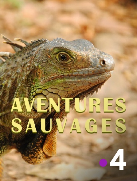 France 4 - Aventures sauvages