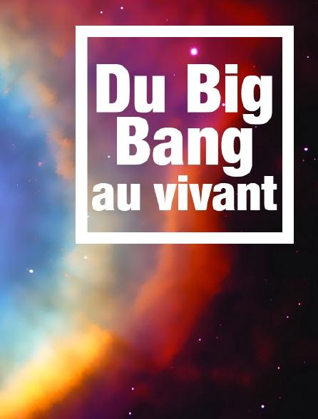 Du Big Bang au vivant
