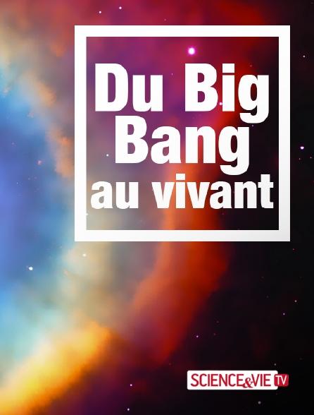 Science et Vie TV - Du Big Bang au vivant