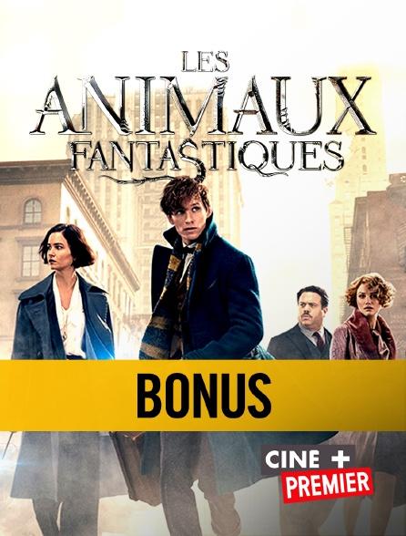 """Ciné+ Premier - Dans les coulisses des """"Animaux fantastiques"""""""