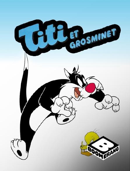 Boomerang - Titi et Grosminet