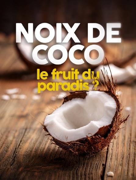 Noix de coco : le fruit du paradis ?