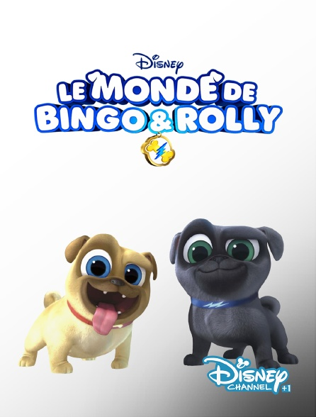 Disney Channel +1 - Le monde de Bingo et Rolly