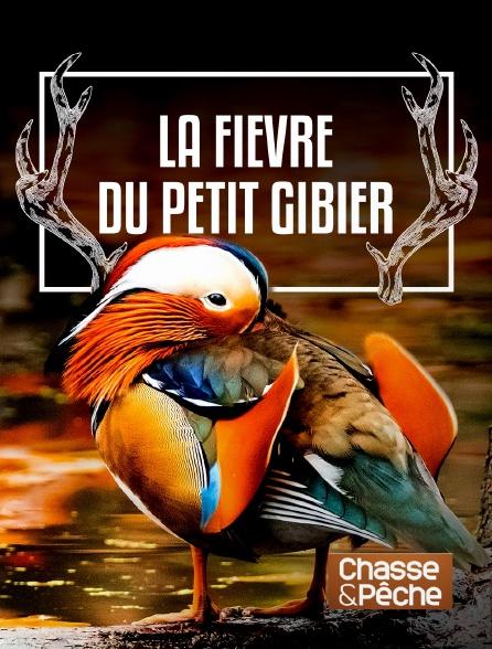 Chasse et pêche - La fièvre du petit gibier