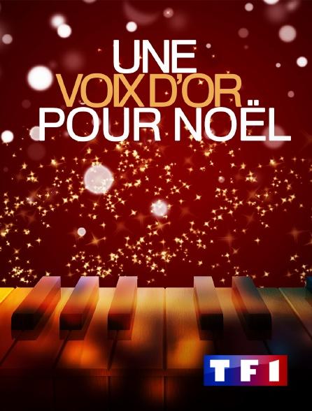 TF1 - Une voix d'or pour Noël