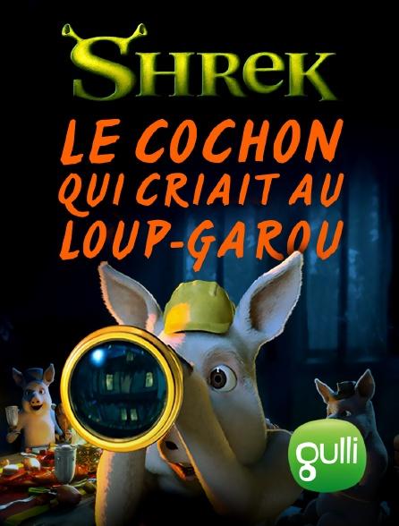 Gulli - Shrek : Le cochon qui criait au loup-garou