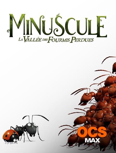 OCS Max - Minuscule : la vallée des fourmis perdues
