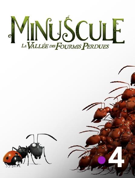France 4 - Minuscule : la vallée des fourmis perdues