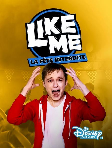 Disney Channel +1 - Like me : la fête interdite