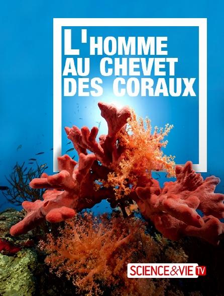 Science et Vie TV - L'homme au chevet des coraux