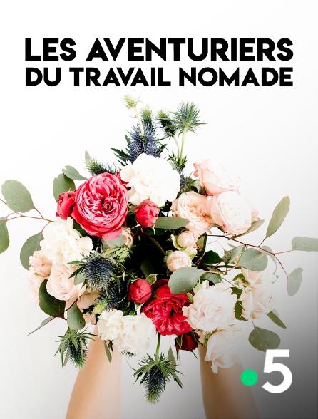 France 5 - Les aventuriers du travail nomade