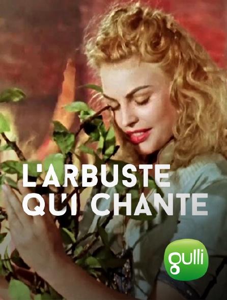 Gulli - L'arbuste qui chante