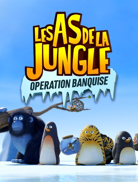 Les as de la jungle : opération banquise