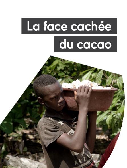La face cachée du cacao