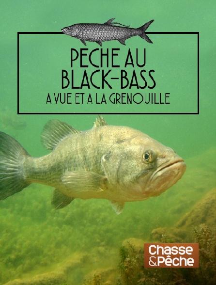 Chasse et pêche - Pêche au black-bass à vue