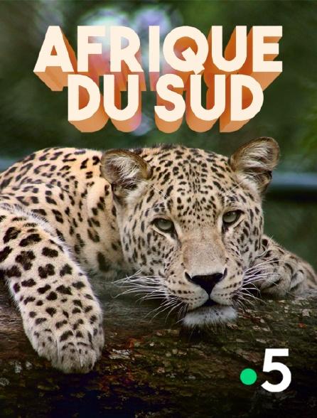 France 5 - Afrique du Sud