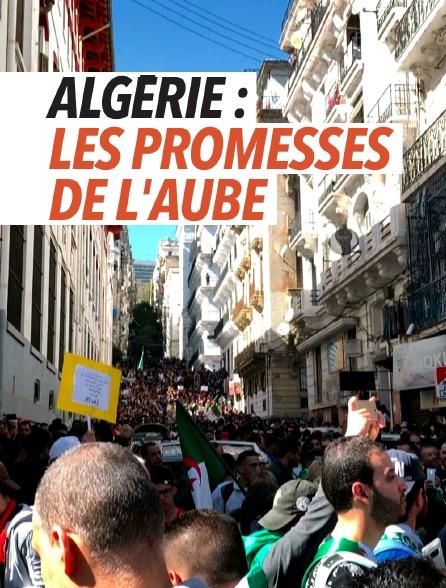 Algérie : les promesses de l'aube