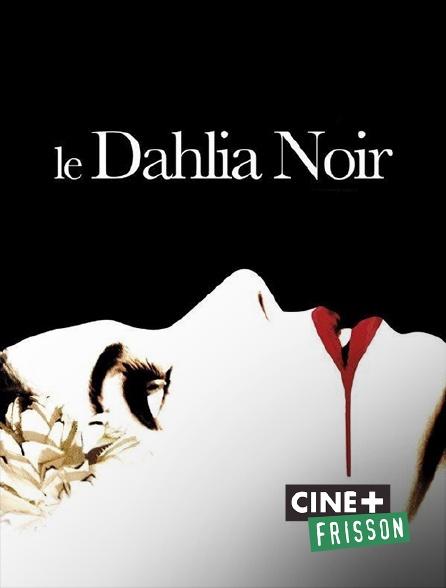 Ciné+ Frisson - Le dahlia noir