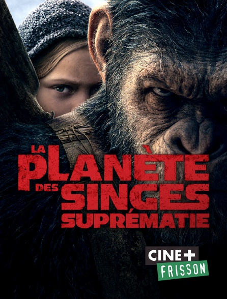 Ciné+ Frisson - La planète des singes : suprématie