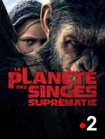 France 2 - La planète des singes : suprématie