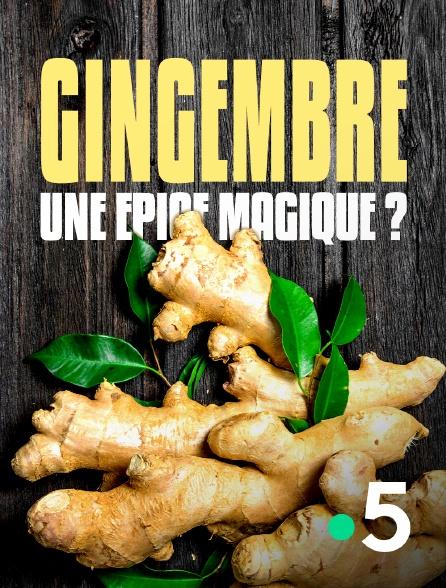 France 5 - Gingembre, une épice magique ?
