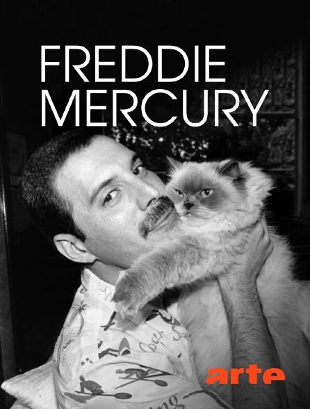Arte - Freddie Mercury