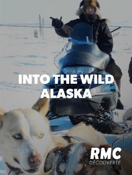 RMC Découverte - Into The Wild : Alaska