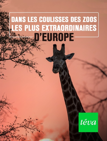 Téva - Dans les coulisses des zoos les plus extraordinaires d'Europe