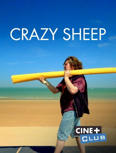 Ciné+ Club - Crazy Sheep