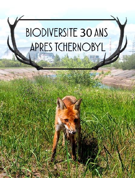 Biodiversité 30 ans après Tchernobyl
