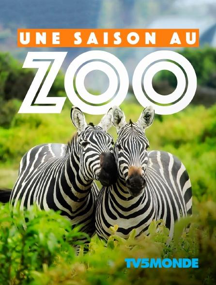 TV5MONDE - Une saison au zoo