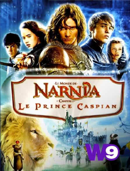 W9 - Le monde de Narnia, chapitre 2 : le prince Caspian