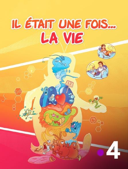 France 4 - Il était une fois... la vie