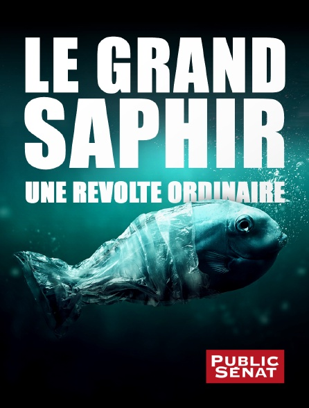 Public Sénat - Le Grand Saphir, une révolte ordinaire