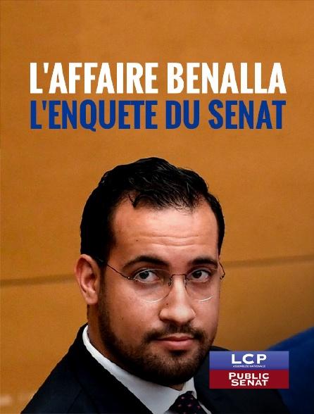 LCP Public Sénat - L'affaire Benalla, l'enquête du Sénat
