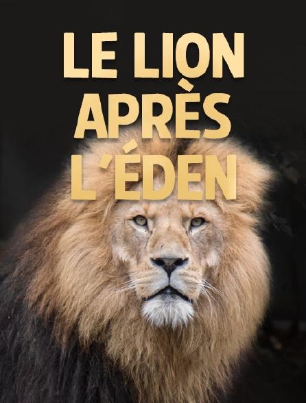 Le lion après l'éden
