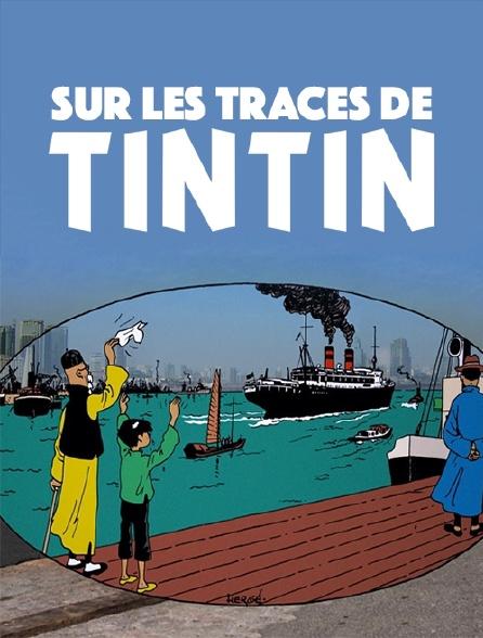 Sur les traces de Tintin
