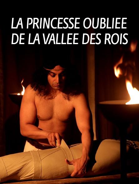 La princesse oubliée de la vallée des Rois