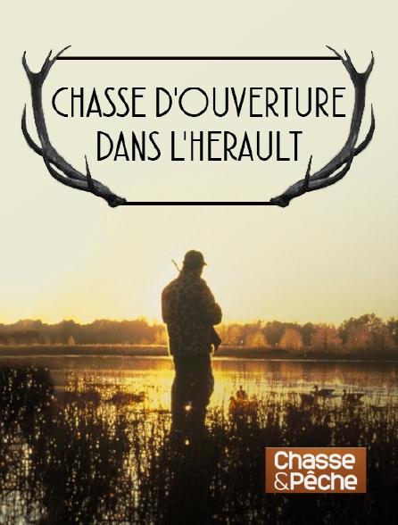 Chasse et pêche - Chasse d'ouverture dans l'Hérault