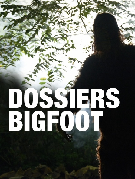 Dossiers Bigfoot