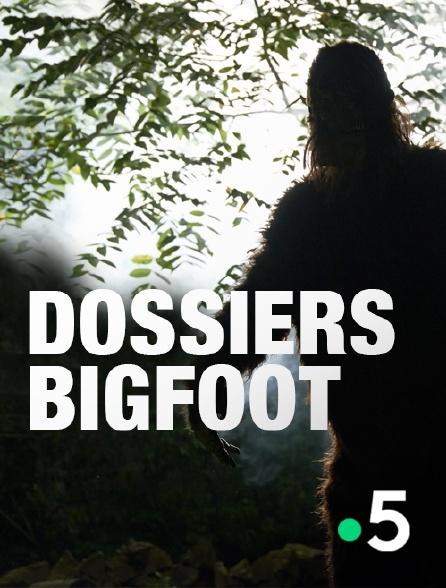 France 5 - Dossiers Bigfoot