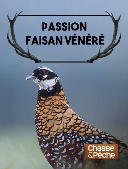 Chasse et pêche - Passion faisan vénéré