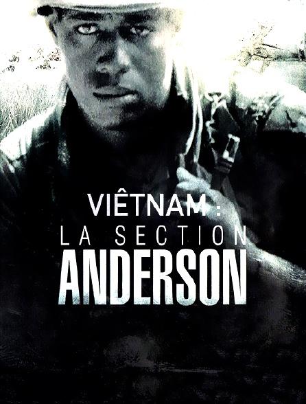 Viêtnam : La section Anderson