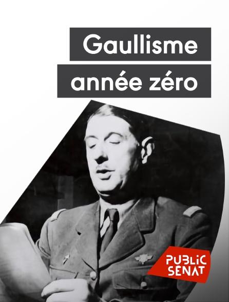Public Sénat - Gaullisme année zéro, la véritable histoire du 18 juin 1940