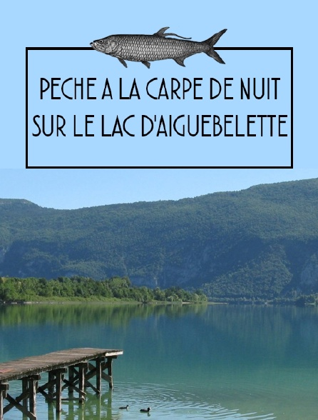 Pêche à la carpe de nuitsur le lac d'Aiguebelette