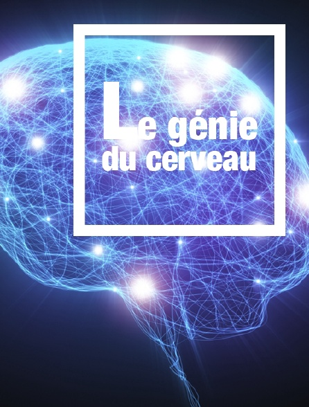 Le génie du cerveau