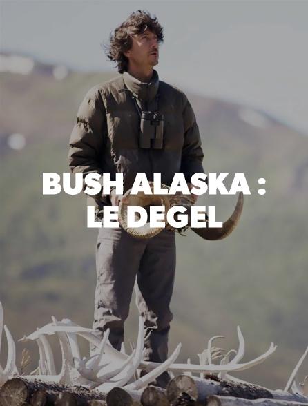 Bush Alaska : le dégel