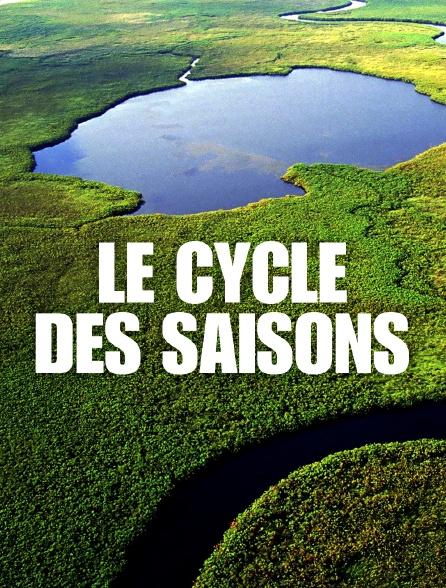Le cycle des saisons