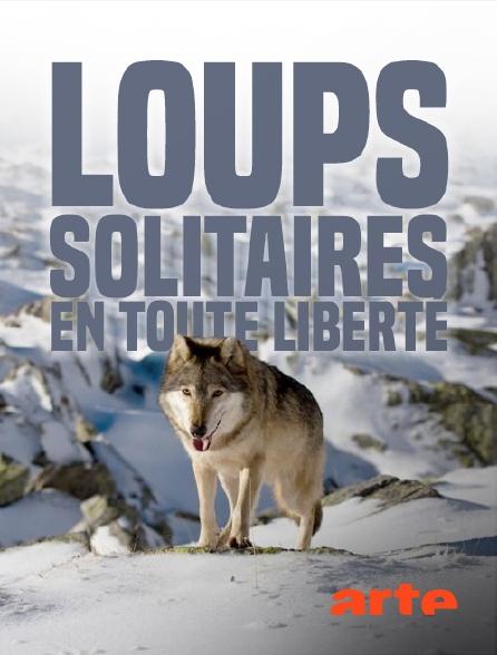 Arte - Loups solitaires en toute liberté